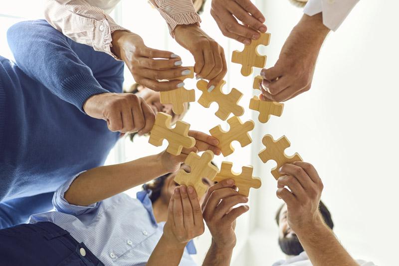 quadrial-coaching-cohesion-equipe